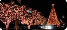 led chrisrmas/tree lights